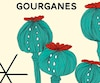 <i>Gourganes</i></br> Alexandra Gilbert</br> Stanké 220 pages, 2017