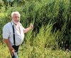 Marcel Monette est devant sa maison sur le bord de la route 335 à Sainte-Anne-des-Plaines, dans les Laurentides. L'herbe et les quenouilles cachent sa résidence par endroit. Il soutient que le ministère des Transports n'a pas entretenu le fossé depuis 2012.
