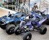 Trois des quads qui font la renommée de Yamaha. À l'avant-plan, le sportif Raptor, à gauche le Grizzly et, à l'arrière, le Kodiak.