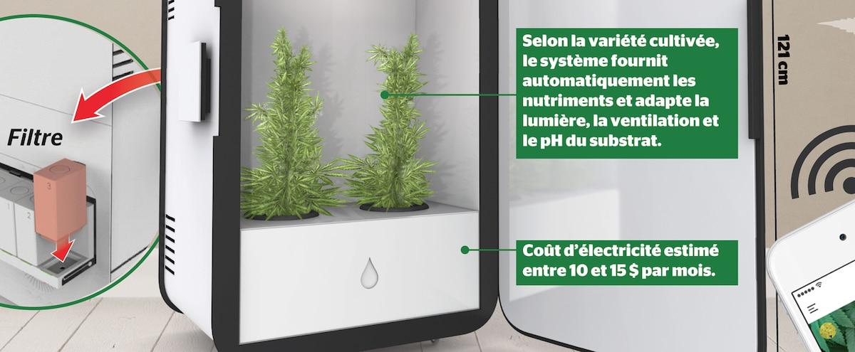 une armoire connect e son cannabis jdm. Black Bedroom Furniture Sets. Home Design Ideas