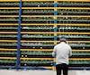 Un employé d'un centre de forage de cryptomonnaies à Farnham vérifie les ventilateurs qui refroidissent les serveurs.