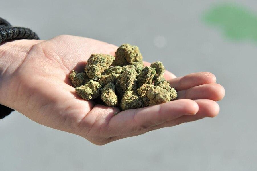 Outaouais: un enfant de 5 ans amène du cannabis à l'école