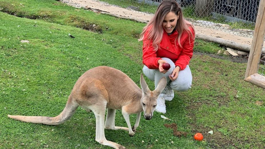 Une journée familiale au Miller Zoo