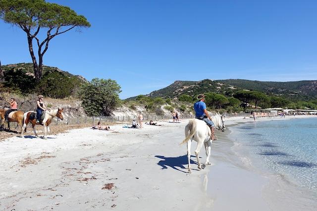 La plage de Pampelonne,  près de Saint-Tropez,  la préférée de Brigitte Bardot.