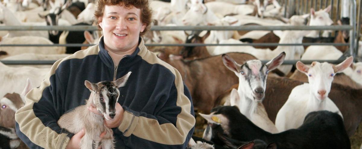 Une famille unie par les chèvres et le fromage - Le Journal de Montréal