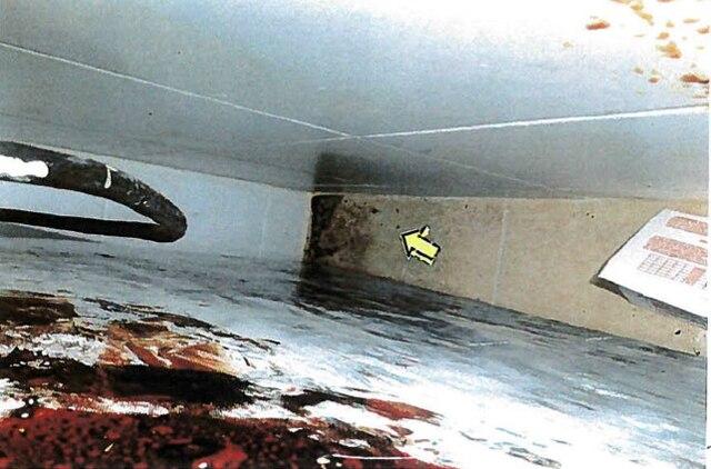 Excréments derrière le réfrigérateur.