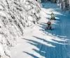 On pourrait croire que l'on se trouve dans un autre monde lorsque les arbres sont chargés de neige sur les sommets, en Chaudière-Appalaches. Un spectacle que seule la motoneige peut offrir.