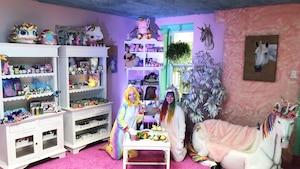 Image principale de l'article Une nouvelle boutique de licornes sur le Plateau