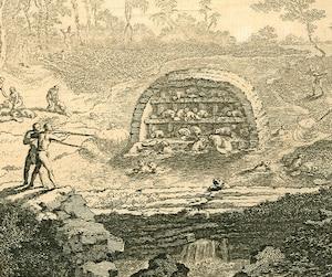 Cette image tirée de L'Encyclopédie de Diderot et d'Alembert montre des Amérindiens à la chasse au castor. Est-ce réaliste? On y voit un barrage de castor occupé par de très nombreux spécimens, comme une sorte de ville de castors, ce qui me paraît peu conforme à la nature de cet animal.