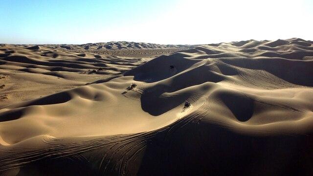Un champ de dunes dans le désert de la Californie.