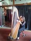 La harpiste Valérie Milot offrira avec quelques complices un hommage à Simon & Garfunkel.