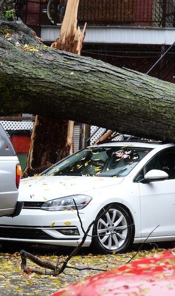 Image principale de l'article Les dégâts du violent orage de cette nuit en photo