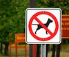 L'interdiction demeure maintenue dans la majorité des parcs nationaux du Québeccomme dans celui des Îles-de- Boucherville.