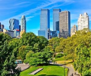 Le Central Park à New York