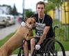 Cloué à un fauteuil roulant à la suite d'un accident de voiture en 2015, Keven Bergeron affirme que son pitbull est devenu son chien d'assistance.