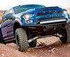 Shelby Baja Raptor 2017