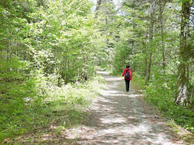 Parc régional du Massif du Sud.