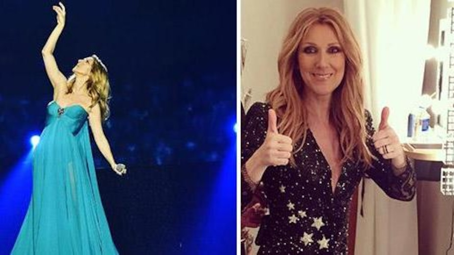 Image principale de l'article Céline Dion lance sa propre ligne de produits lifestyle