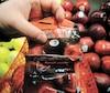 Le logo Aliments du Québec regroupe plus de 20000produits comme ces pommes.