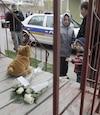 Nancy Bergeron et ses enfants laissent des fleurs et un toutou au 15 rue Foisy à Lévis Un bambin est mort par balle au 15 rue Foisy à Lévis. La sureté du Québec enquête dans ce dossier.