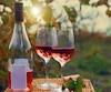 bloc vin vins