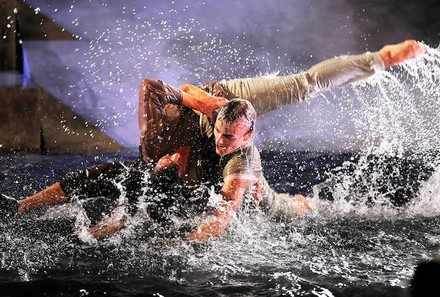 Les acrobates n'hésitent pas à se lancer dans l'eau rapidement en début de prestation.