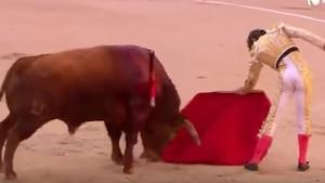 Image principale de l'article Une plaie de 25 cm au rectum pour un torero