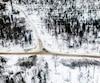 Les coupes forestières au Québec.