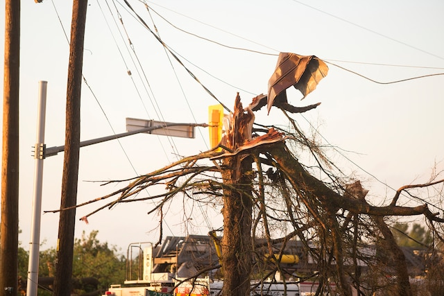 Dunrobin, un secteur de la ville d'Ottawa, a aussi été touché par la tornade.