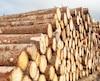 bois industrie