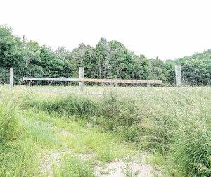 En juillet, l'herbe haute dans les enclos de la ferme Harpur à Grenville-sur-la-Rouge, où la maladie du cerf fou a frappé, démontre que la décontamination n'a toujours pas été effectuée par le fédéral.
