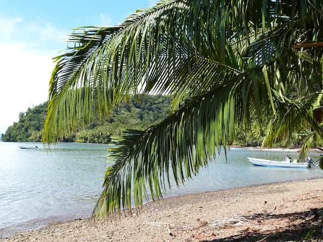 La baie de Playa Cativo.