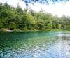 Bloc forêt bois Lac nature biodiversité