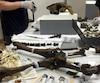 Deux conservateurs venus du Musée d'histoire naturelle de Londres ont passé une journée complète pour assembler le squelette du tigre à dents de sabre, âgé de 12 000 ans, débarqué à Québec en pièces détachées.
