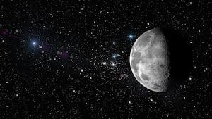 Image principale de l'article Un signal radio capté par un télescope canadien