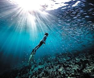 Dans les profondeurs de Baja, au Mexique.