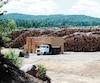 La cour à bois de la scierie Crète, à Chertsey, est adossée au parc de la forêt Ouareau, où le ministère prévoit qu'un potentiel de 140 000m3 de bois pourrait être coupé d'ici 2023.