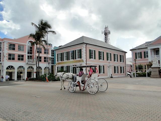 Les bâtiments coloniaux sont de  couleur rose, ce qui rappelle  le flamant rose, l'oiseau national.