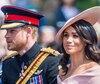 Prince Harry Meghan royauté monarchie