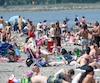 La baignade dans le fleuve Saint-Laurent a été permise pendant 36 jours à la Baie de Beauport cet été.