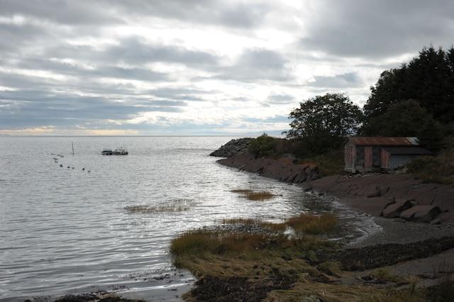 Les forages de TransCanada doivent servir à une étude d'impact environnemental en vue de la construction d'un terminal maritime pétrolier à Cacouna, qui permettrait d'exporter le pétrole albertain.