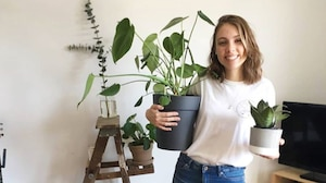 Un «pop-up» de plantes a lieu ce week-end à MTL
