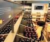 La majorité des succursales de la SAQ n'auraientpas l'espace nécessaire pour accueillir des points de dépôt pour les bouteilles déposées en consigne.