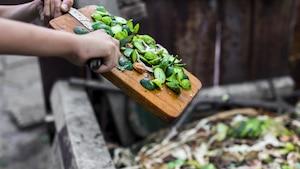 4 astuces pour réussir votre compost