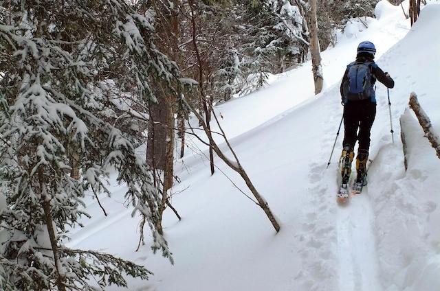 L'endroit est parfait pour s'initier au ski de haute route.