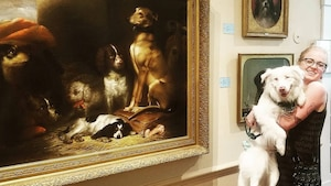 Un musée des chiens ouvre bientôt