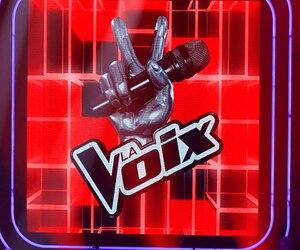 Bloc logo La voix