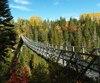 Au Canyon des Portes de l'Enfer, on emprunte la plus haute passerelle suspendue du Québec.
