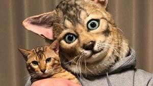 Un masque à l'effigie de votre chat!