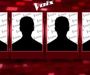 Les coachs de La Voix 8 maintenant dévoilés